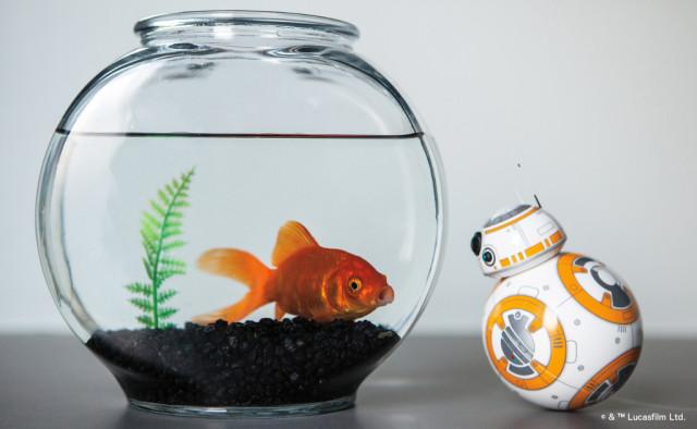 BB-8 aus Star Wars von Sphero