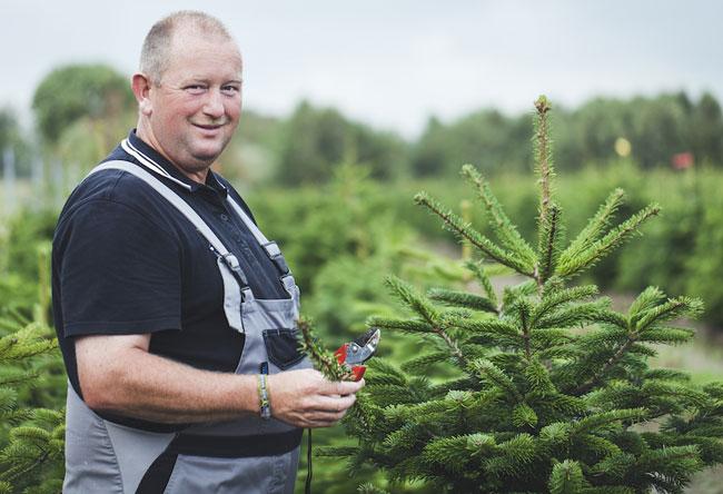 Weihnachtsbaum von Hans Peter Honnens aus Schleswig Holstein