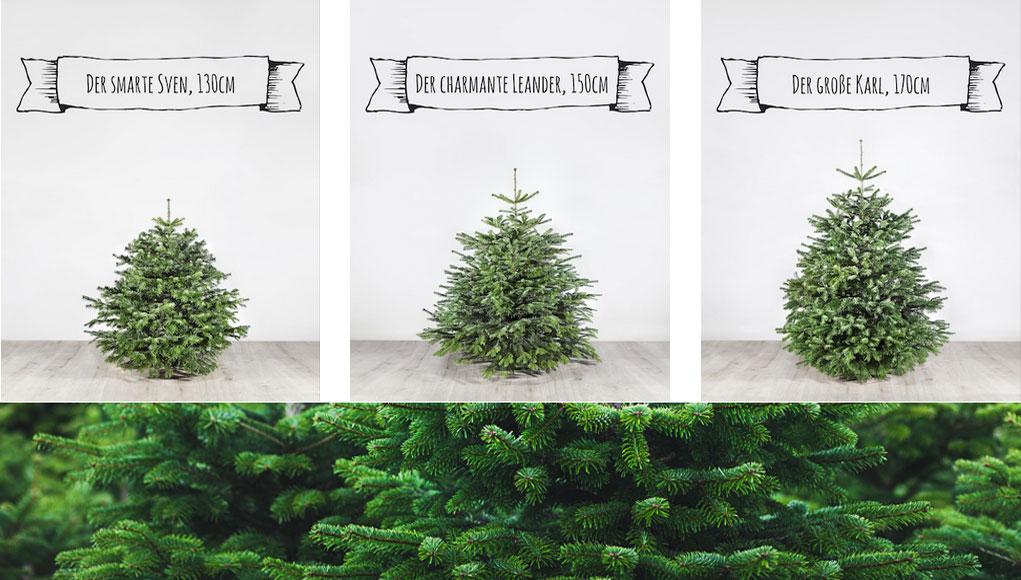 weihnachtsbaum kaufen wann depresszio. Black Bedroom Furniture Sets. Home Design Ideas